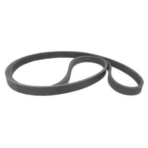 Rikon drive belt